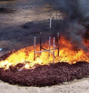 Rubber mulch, shown flaming, produced the highest flames and temperatures of the eight mulches tested.. Courtesy of the UC Division of Agriculture and Natural Resources