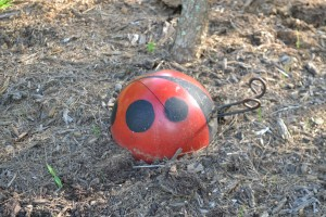 "A ladybug is always a beneficial ""bowling ball""!"
