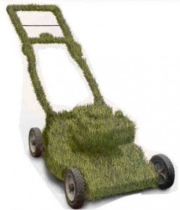 LawnMower_Grass-Covered