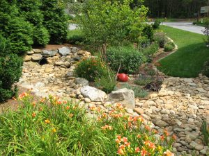 Water Management in Rain Garden