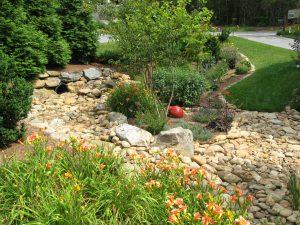 Water Management in Rain Garden