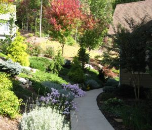 Diverse planting of conifers, perennials, and ground covers on entryway slope.