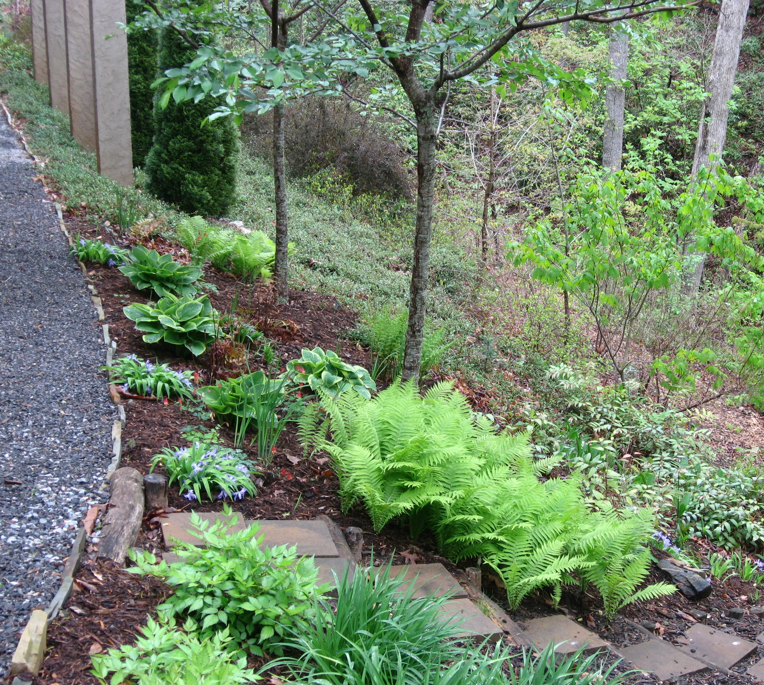 Garden Design For Sloped Garden Ideas: Extension Master Gardeners Of Buncombe County