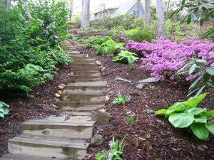 Pressure-treated lumber steps