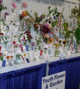 Youth Flower and Garden Show entries