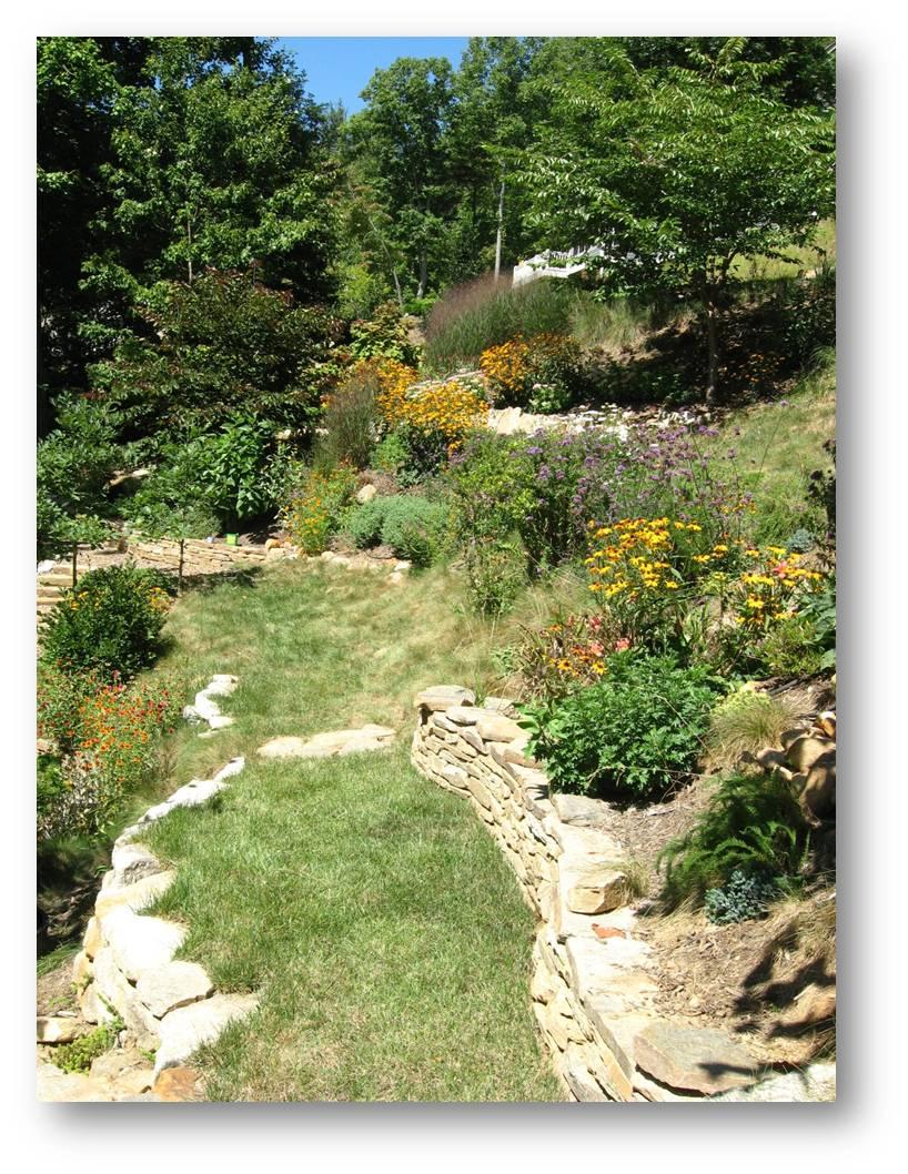 Planting on slopes extension master gardener volunteers for Gardening and maintenance