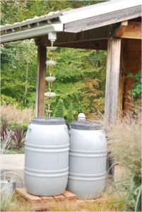 Rain barrels at N.C. Arboretum, Asheville
