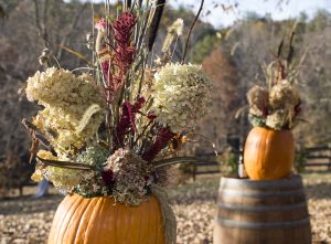 Dried flower arrangements create everlasting gardens.