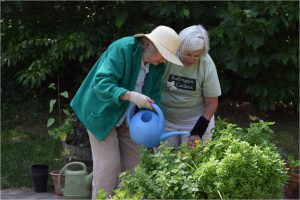 Seniors enjoy the challenge of caring for their garden.