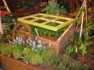 Cold Frame_Cheryl Kohan_CC BY-NC-ND 2.0_Flickr