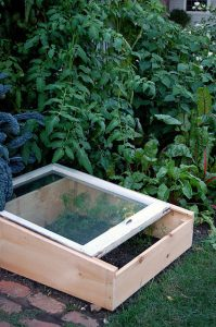 Cold frame in garden_CC BY-NC-ND 2.0_Flickr