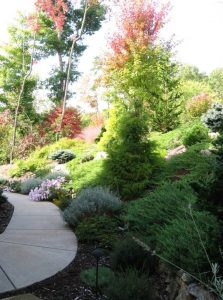 Variety of groundcovers, interplanted with shrubs and trees, manage erosion on steep slope.