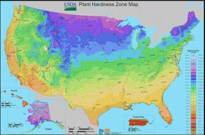 USDA Hardiness Map-Stuart Rankin-BY-NC-ND-2.0