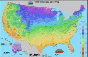 USDA Hardiness Map-Stuart Rankin-BY-NC-ND-2.0