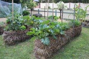Straw bale gardening--good for small spaces and problem soils